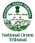 India's National Green Tribunal